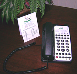 Custom Telephone Printing